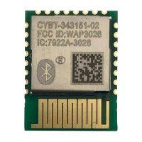 CYBT-343151-02_射频